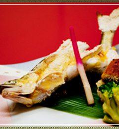 新鮮な魚料理を提供してます!